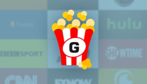 Getflix: Watch your favorite shows without a VPN