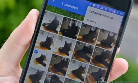 Google Photos now makes funny cat and dog videos